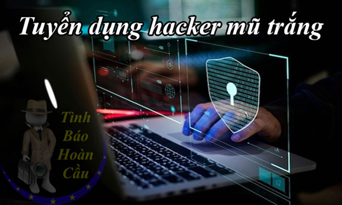 Tuyển dụng hacker mũ trắng trên toàn quốc